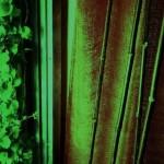 東京新宿整体たけそら|隠れ家プライベートマッサージサロン7